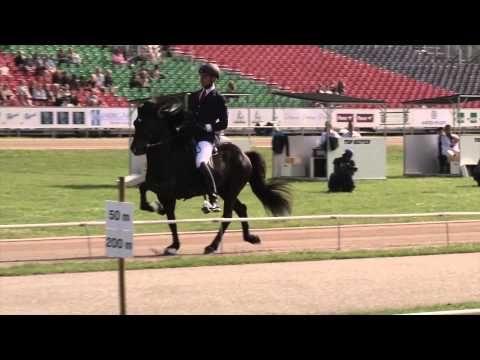 Nils Christian Larsen, T1 prel, WC Icelandic Horses, Islandpferde-WM,