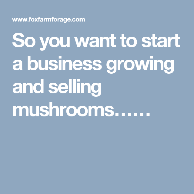 So you want to start a business growing and selling mushrooms……