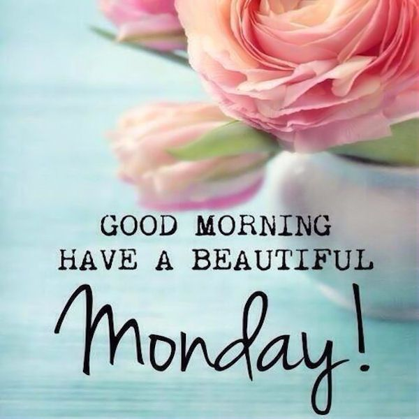 Good Morning Have A Beautiful Monday Monday Good Morning Monday Quotes Good Morning Quotes Happy Monday Monday Quote Happy Monday Quotes