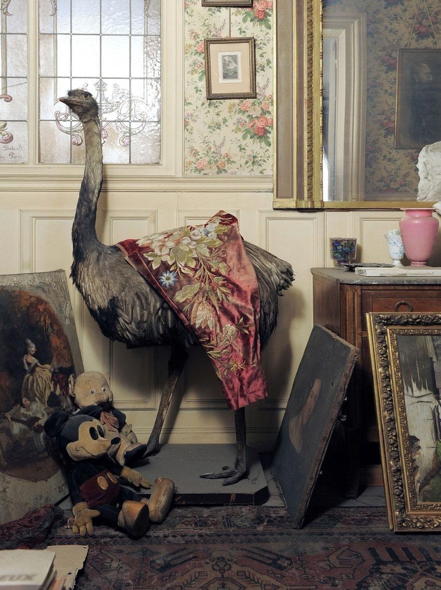 Vivienda abandonada en París desde 1942 - Friki.net