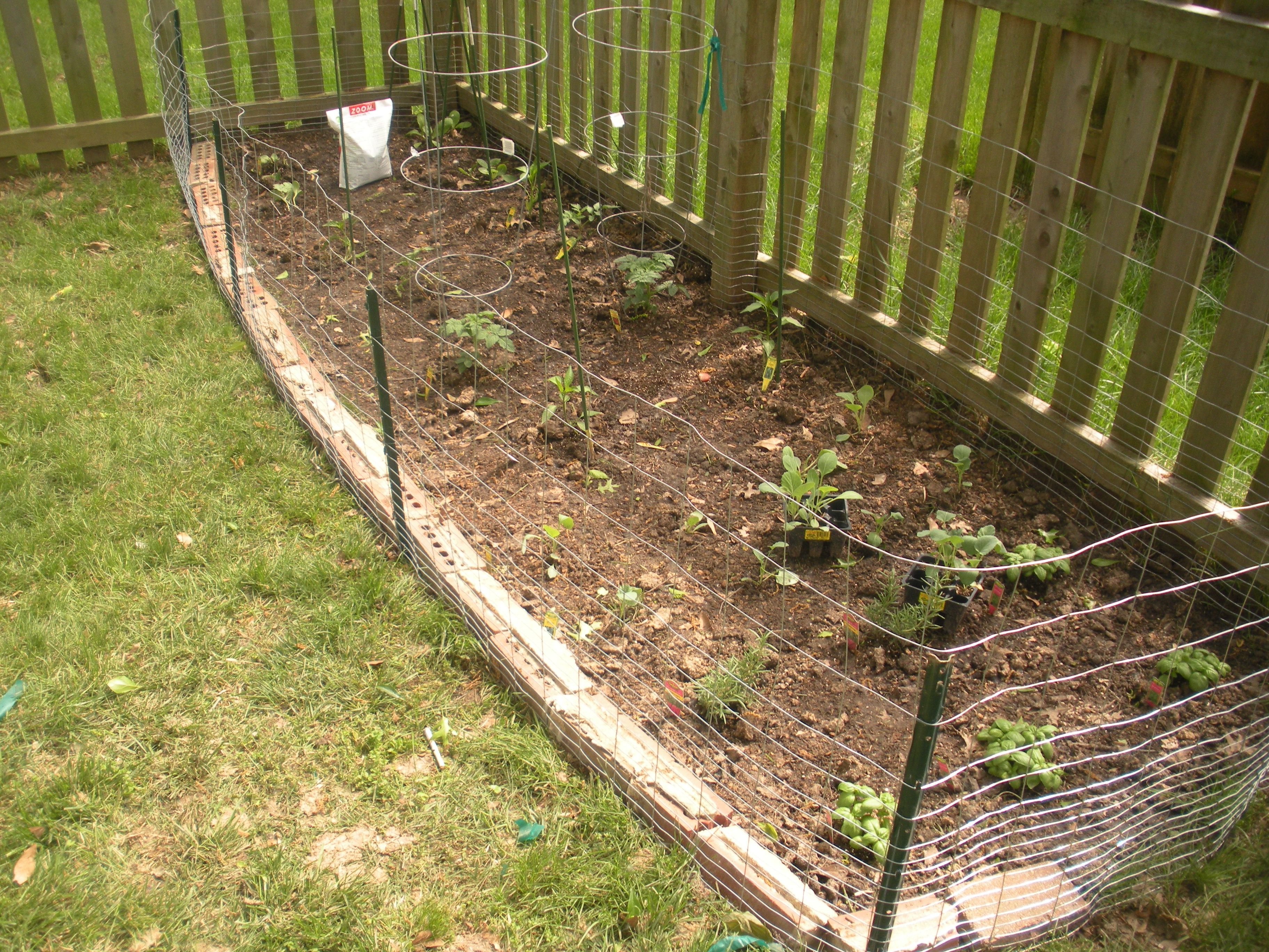 vegetable garden fence ideas but the wire fence we put up goes along the wooden fence