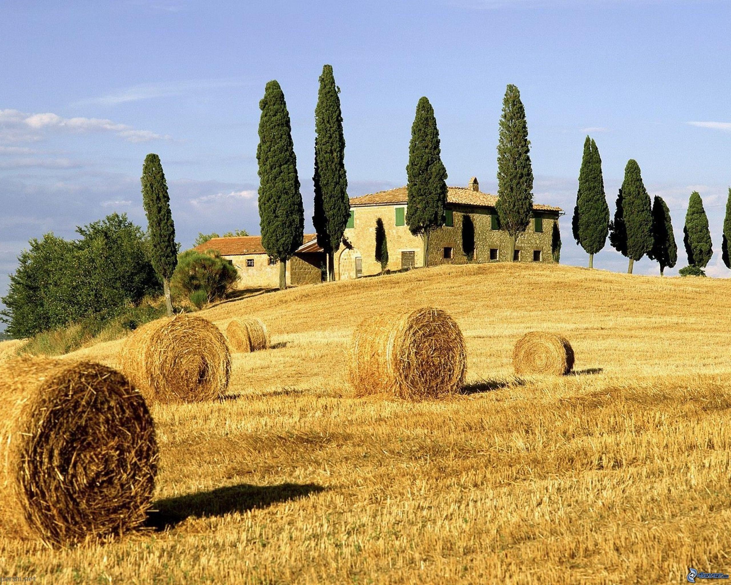 Ambiente- Hay una casa solitaria en un valle con un cosecha de maiz y frijoles.