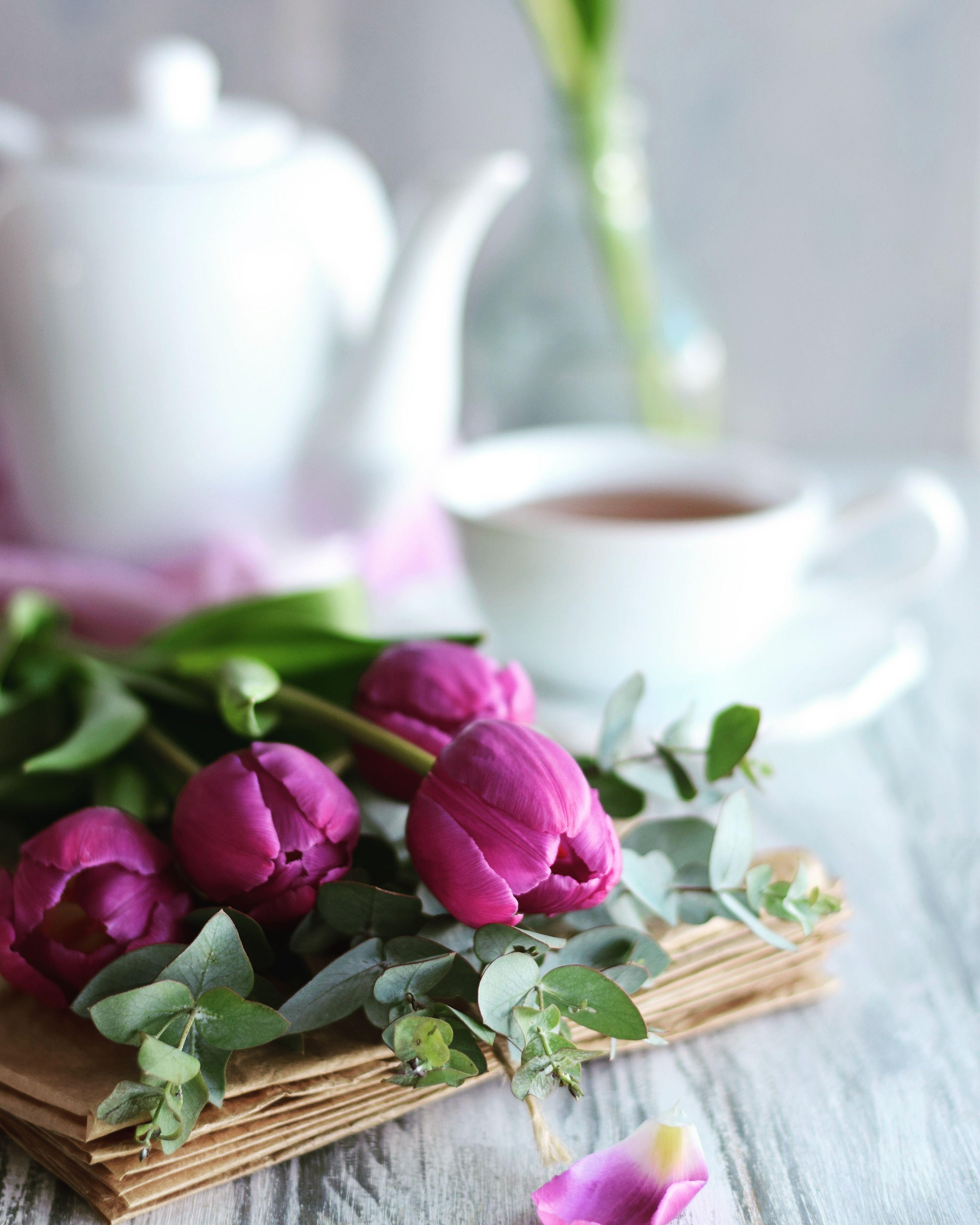 цветок пьют чай