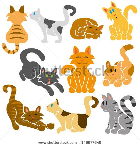 set of cute different vector cats