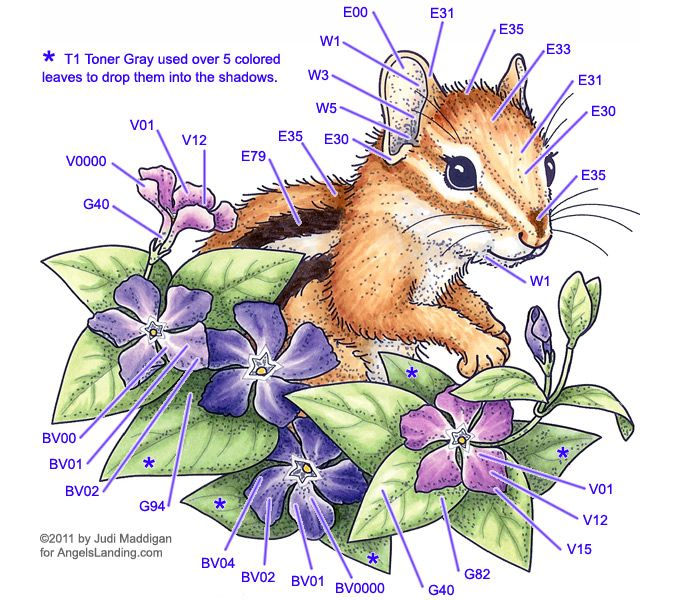 Copic Coloring Guide: Chipmunk & Vinca | Colors-mixing/ Watercolor ...