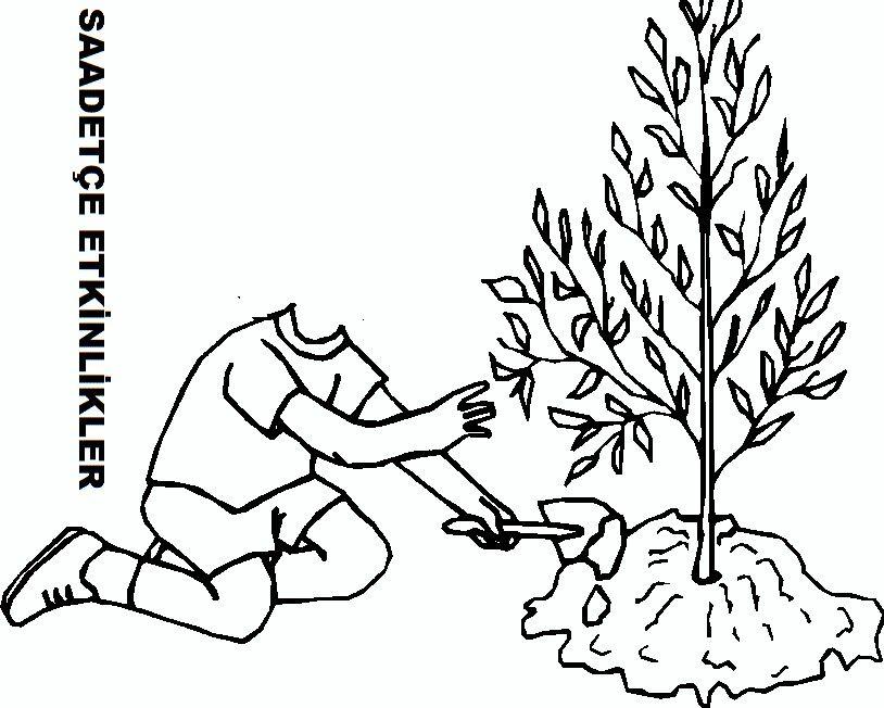 Orman Haftasi Boyama Sayfalari Ormanlar Faaliyetler
