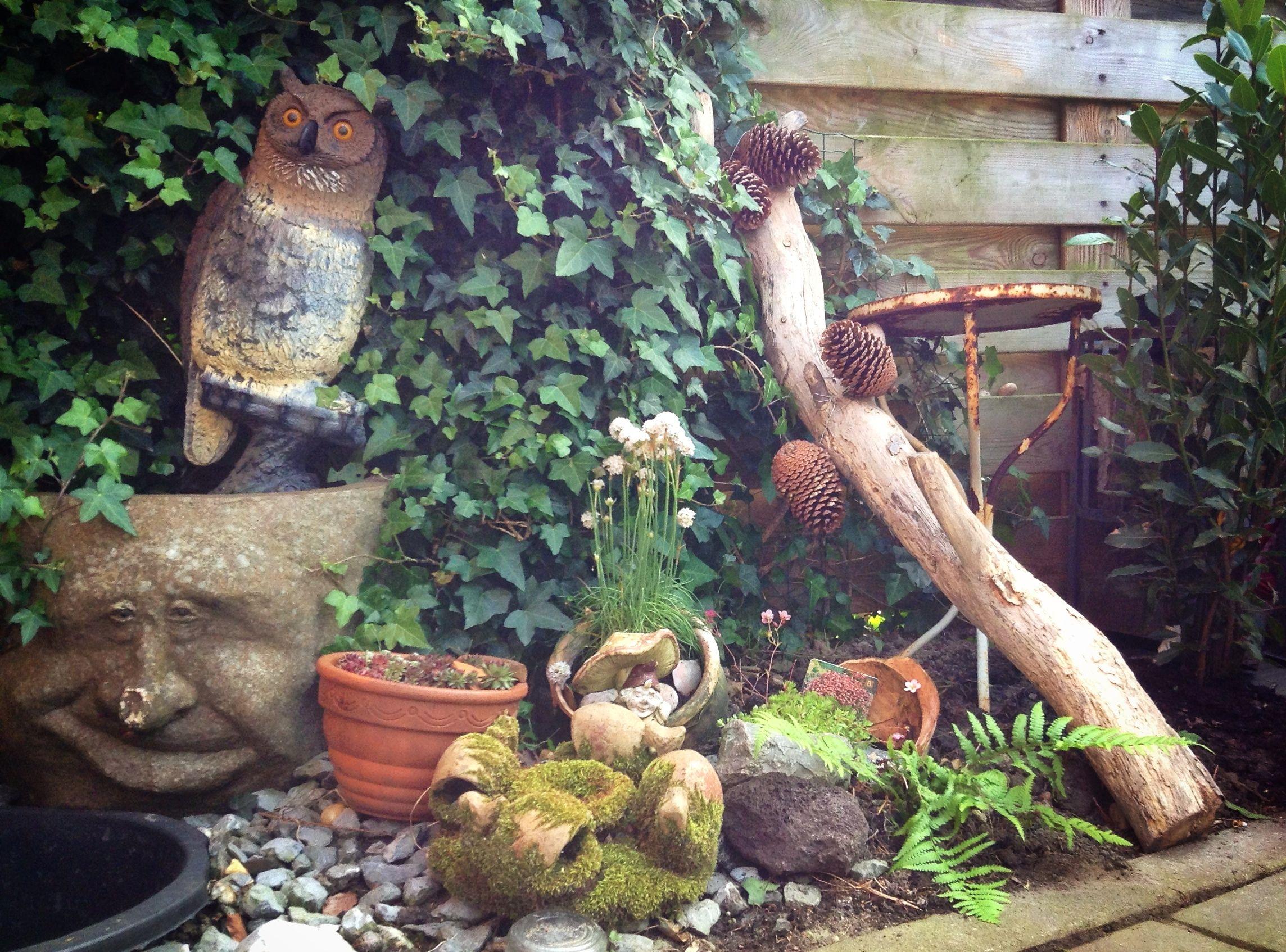 Sprookjesachtig hoekje in m'n tuin...