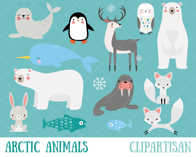 Arctic Animals Clipart Winter Animals Clip Art Polar