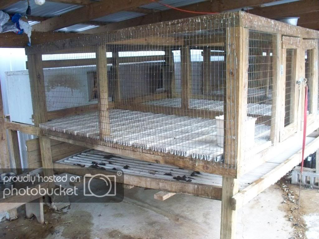 Ukc Forums Concrete Vs Elevated Dog Kennels