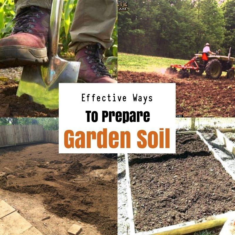 7fd0ad2d77dd3ae67c03a92941bc7525 - How To Prepare Georgia Soil For Gardening