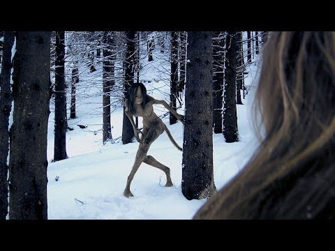 Hunt for Skinwalker: Jeremy Corbell Interview - Richard Dolan Show 7fd0f3543a562b0befe78db5cb1ac441