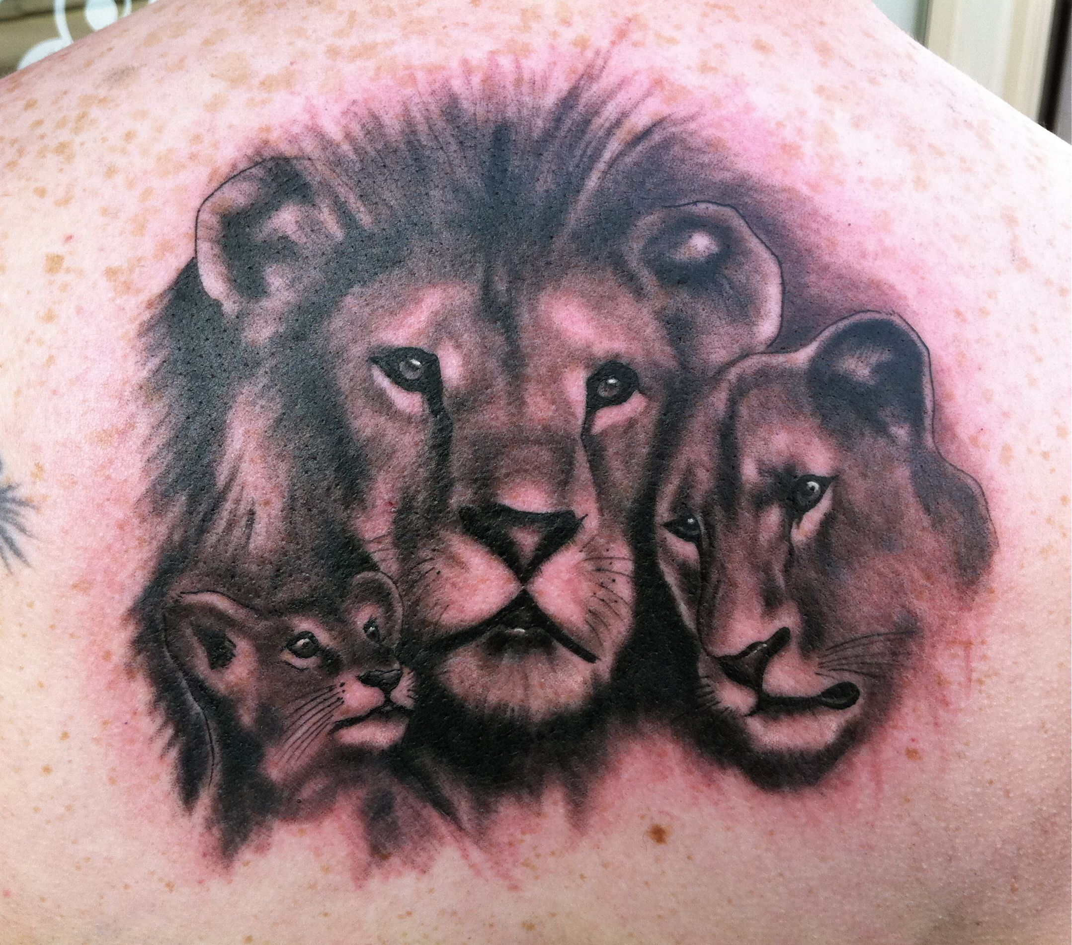 lion family tattoo google search lion tat ideas. Black Bedroom Furniture Sets. Home Design Ideas
