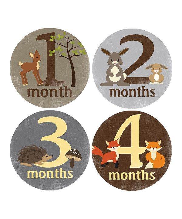 Look at this Forest Creatures Monthly Growth Sticker Set on #zulily today!