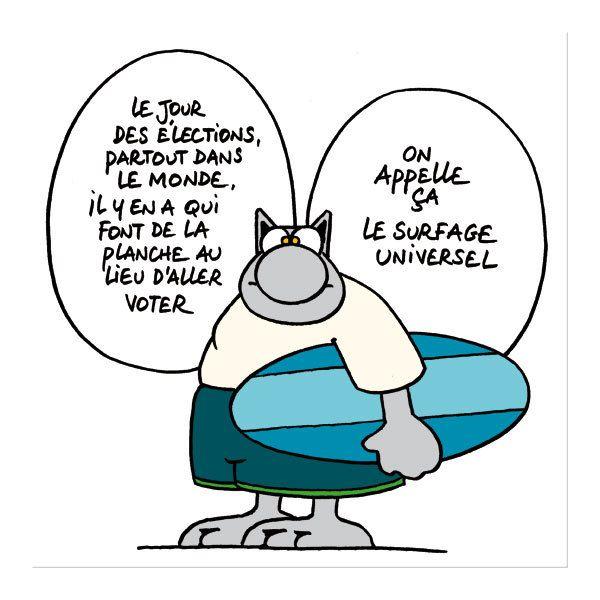 """Résultat de recherche d'images pour """"bon vote humour"""""""