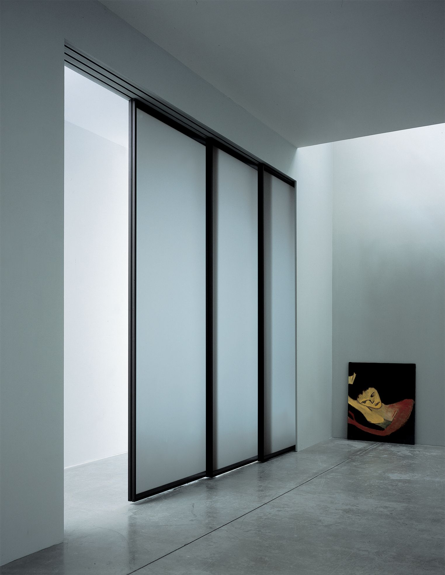 Furniture Sliding Opaque Glass Doors With Black Stainless Steel