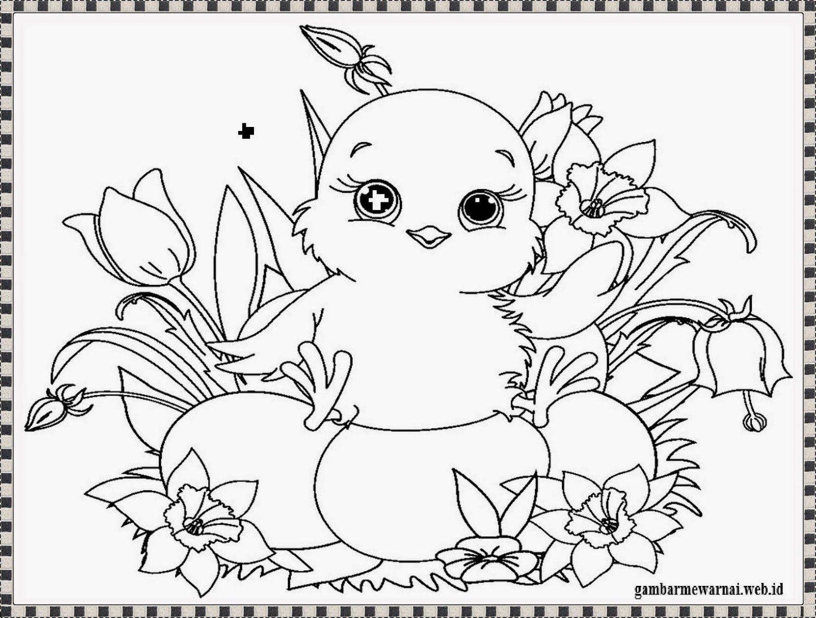 Gambar Mewarnai Anak Ayam Gambar Mewarnai Pinterest