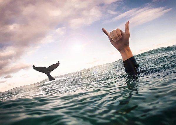 Momento perfecto. Byron Bay Nueva Gales del Sur