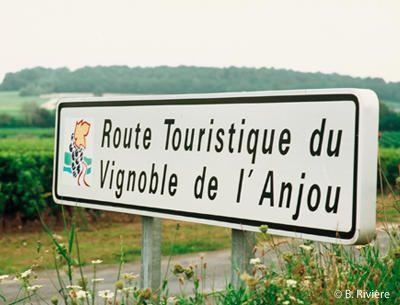 Route touristique du vignoble de l'Anjou en Val de Loire / Tourist Route vineyards of Anjou in the Loire Valley