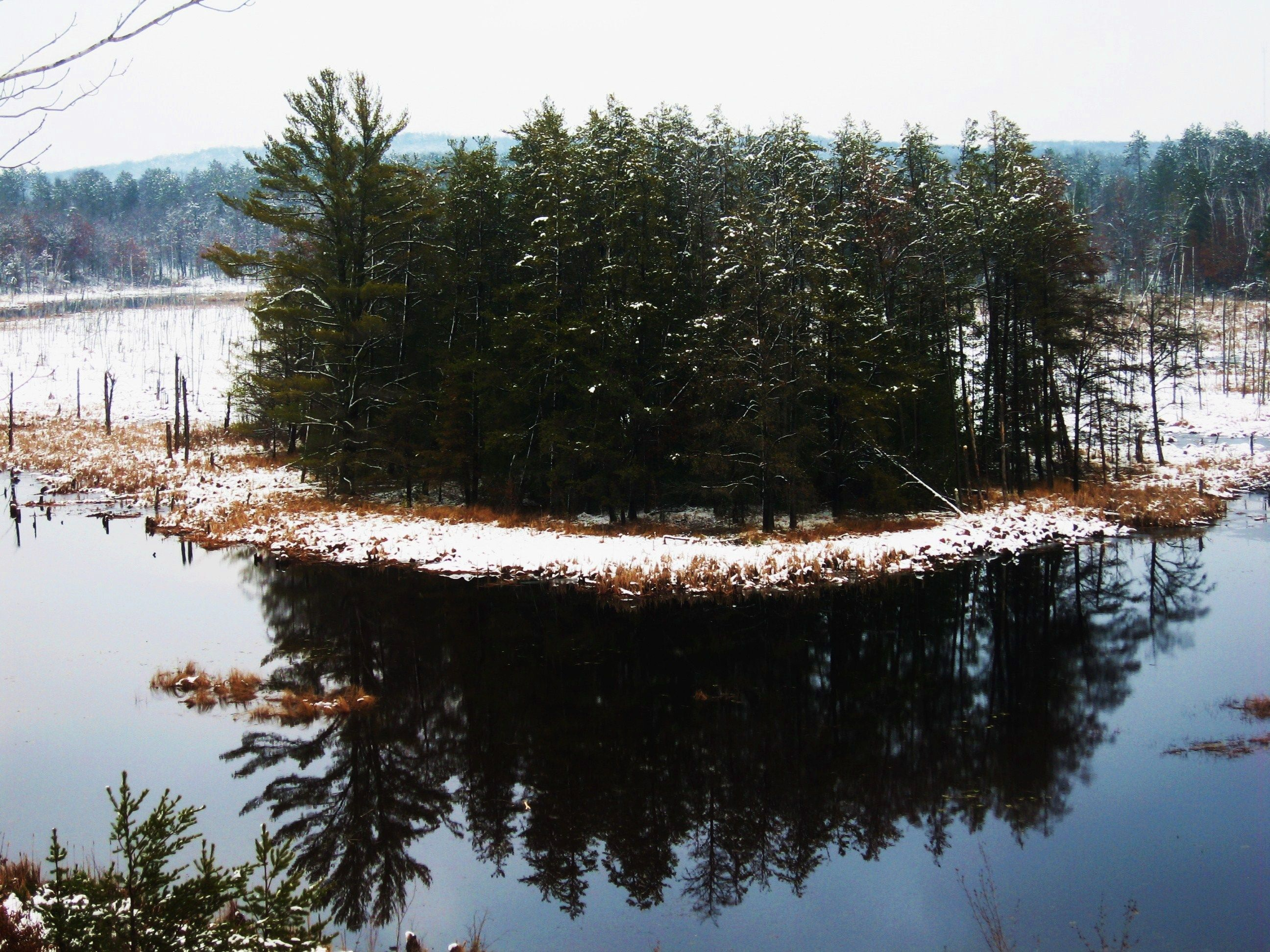 First snow on the beaver pond - early November.
