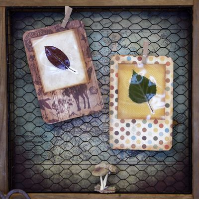 Pin By Amanda Le Roux On Shadowboxes Printers Trays Pinterest