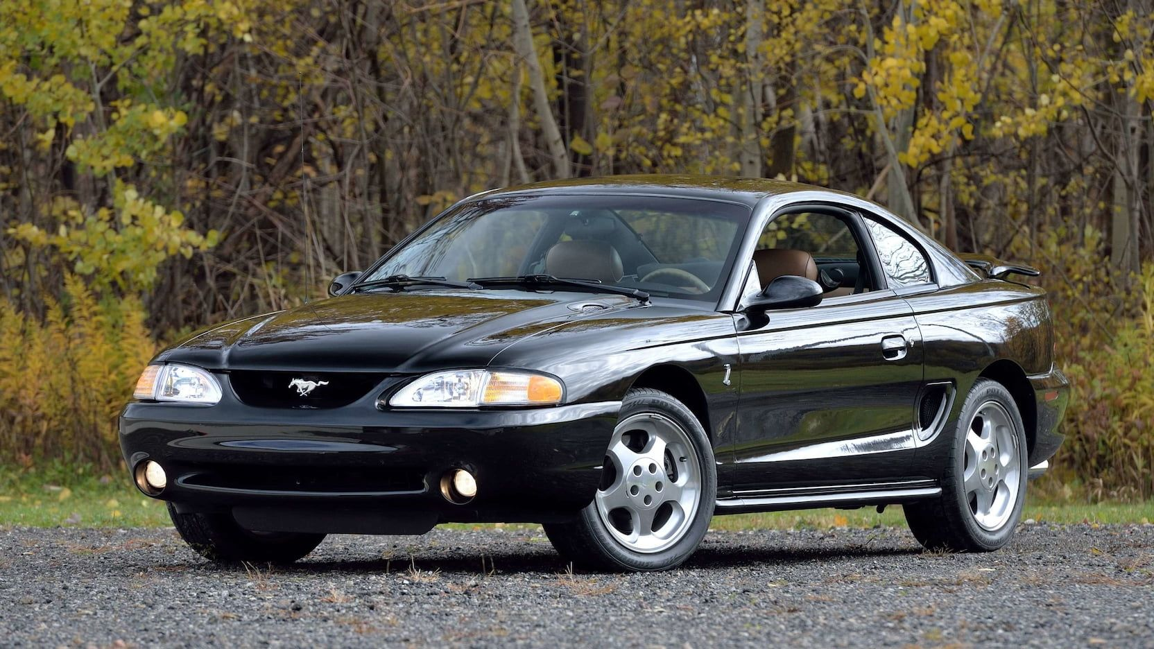 1994 Ford Mustang Svt Cobra Presented As Lot F194 At Kissimmee Fl Ford Mustang Mustang Sn95 Mustang
