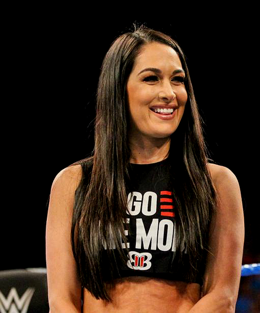 You Can Look But You Can T Touch Brie Bella Wwe Nikki And Brie Bella Brie Bella