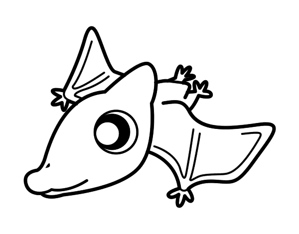 Dibujo de Pterodáctilo bebé para colorear | Drawing | Pinterest ...