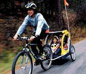 bike trailer --> www.biketrailersreviews.net