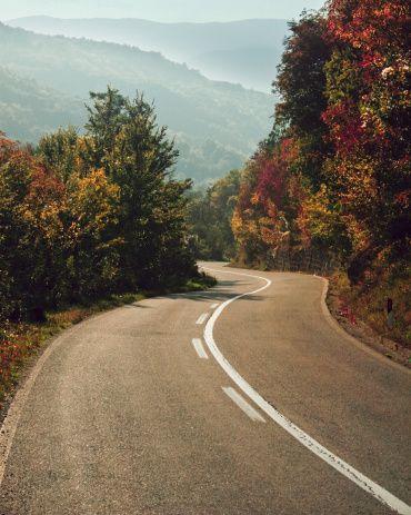 Road through autumn trees - Kosovo