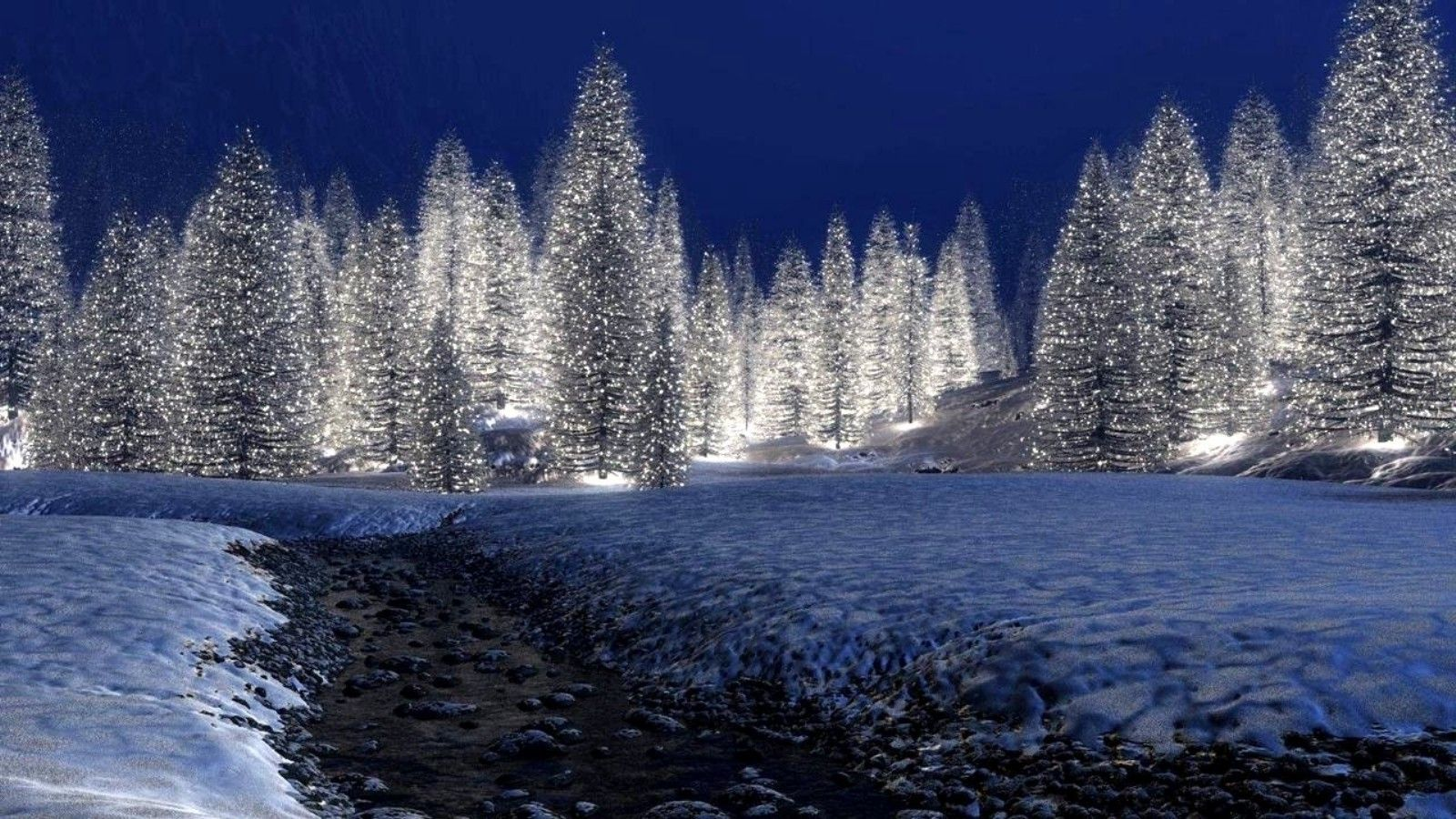 Winter Forest Night Wallpaper Free Click Wallpapers