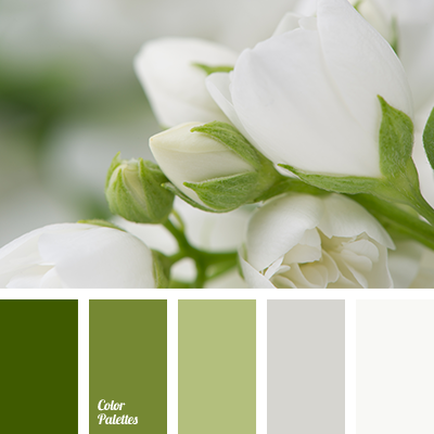 Almost White Color Of Concrete Stone Young Greenery Dark Green Grey Khaki Gray Light