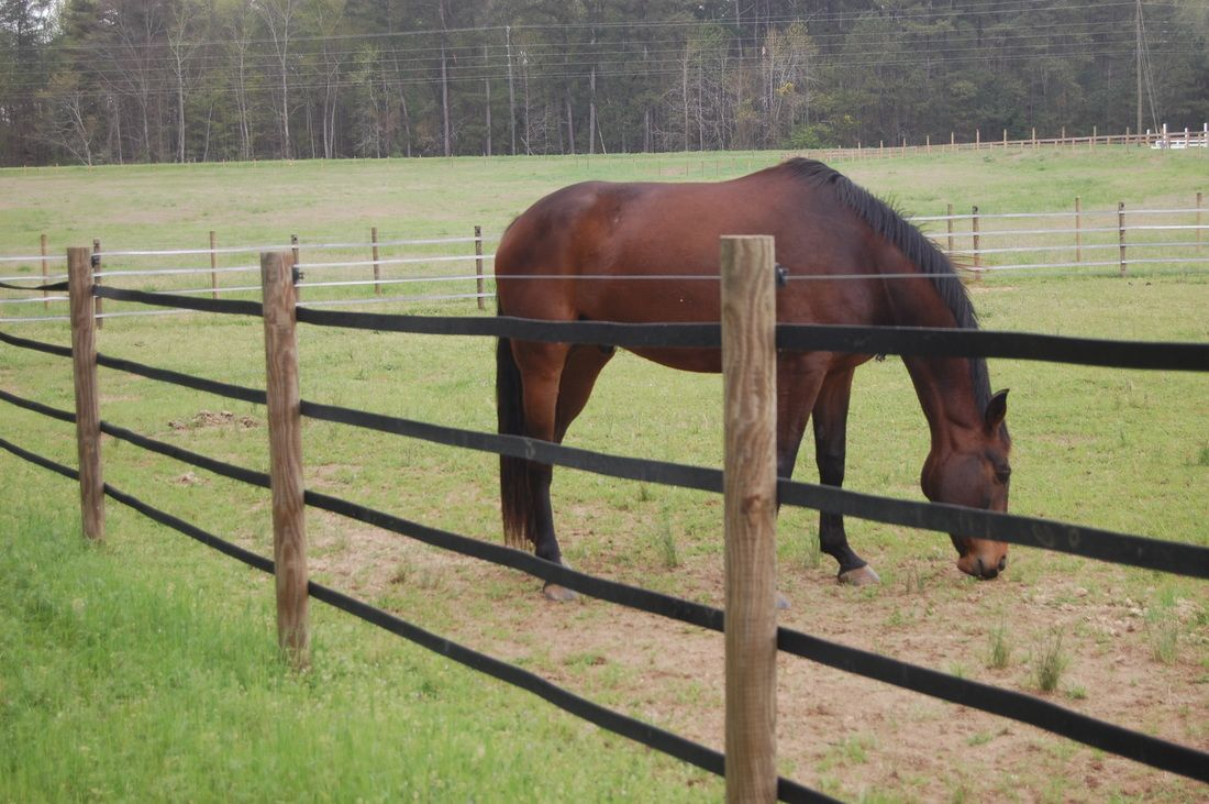 Rubber Fencing Stable Barn Arena Farm Layout Ideas Pinterest What Is Electric How Does An Fence Work