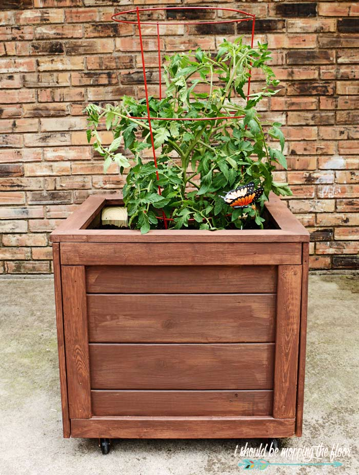 How to Make a Rolling Planter Box is part of Planter boxes, Wooden planter boxes diy, Diy planter box, Diy wooden planters, Diy planters, Garden planter boxes - How to Build a Rolling Planter Box Complete stepbystep tutorial with photos