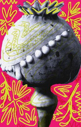 El negocio de la Amapola está en pleno auge: esta flor es cultivada para la producción de Heroína Colombiana, que desde entonces inunda los mercados internacionales, desplazando a los asiáticos que monopolizaban este mercado. El gobierno y la oficina antinarcóticos ordenan operaciones policiales y fumigaciones masivas con herbicidas de alta toxicidad como el Glifosato, sorprendiendo a los indígenas que no sabían para qué se utilizaba la Amapola que estaban sembrando, ni a qué estaba…