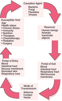 virus definition health