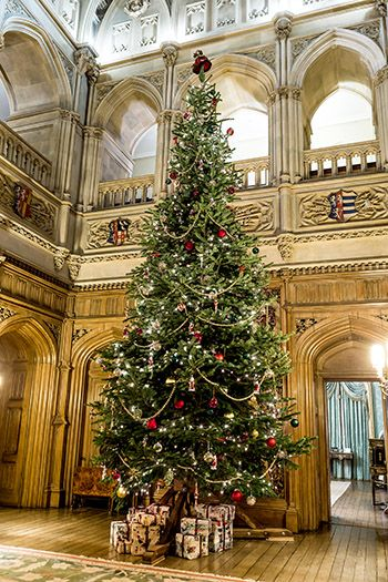 Castle Tours, Carols and Magic | Highclere castle ...