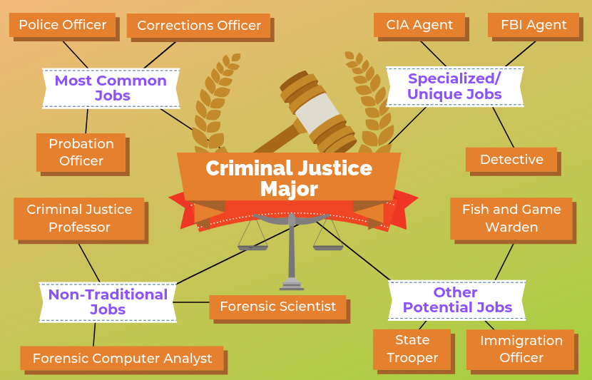 12 Jobs For Criminal Justice Majors The University Network Criminal Justice Criminal Justice Major Forensic Scientist