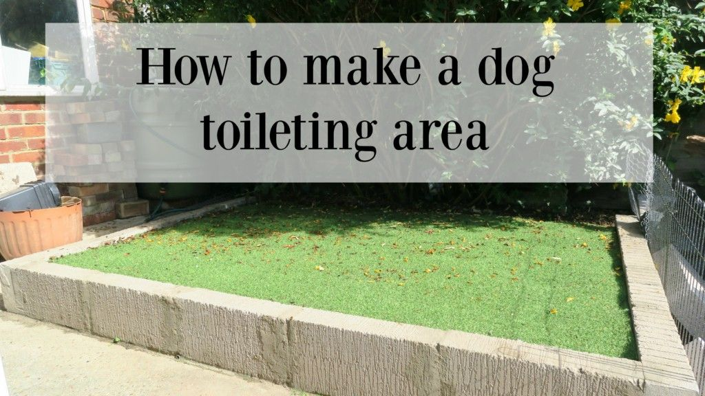 how to make a dog toilet in the garden - Renovation Bay ...