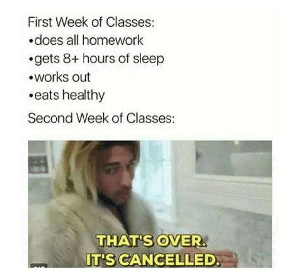 100 Memes About University That Ll Make You Laugh Then Silently Weep Freshman Memes College Memes Funny Relatable Memes