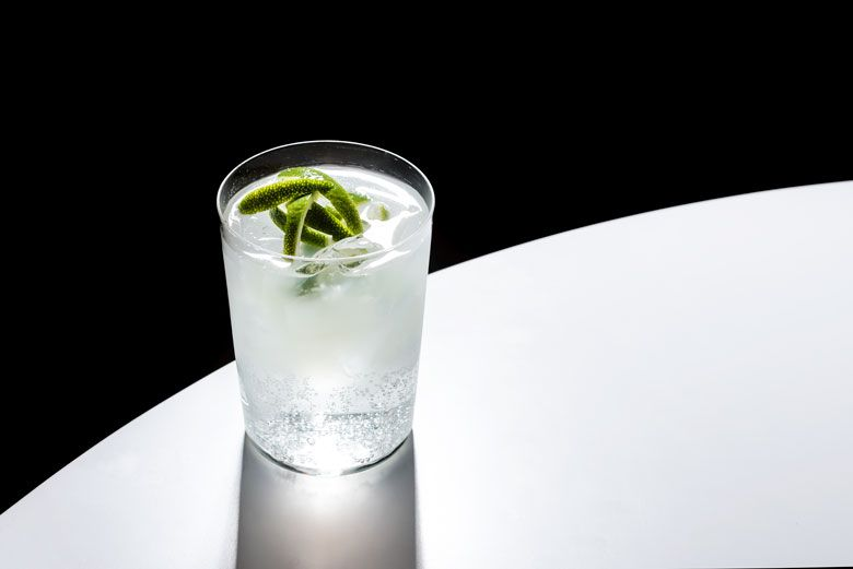 Toby Cecchini S Gin And Tonic Recipe Punch Recipe Gin And Tonic Gin Tonic Recipe