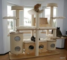 cat house - Google Search | meow | Pinterest | Cat houses, Cat and ...