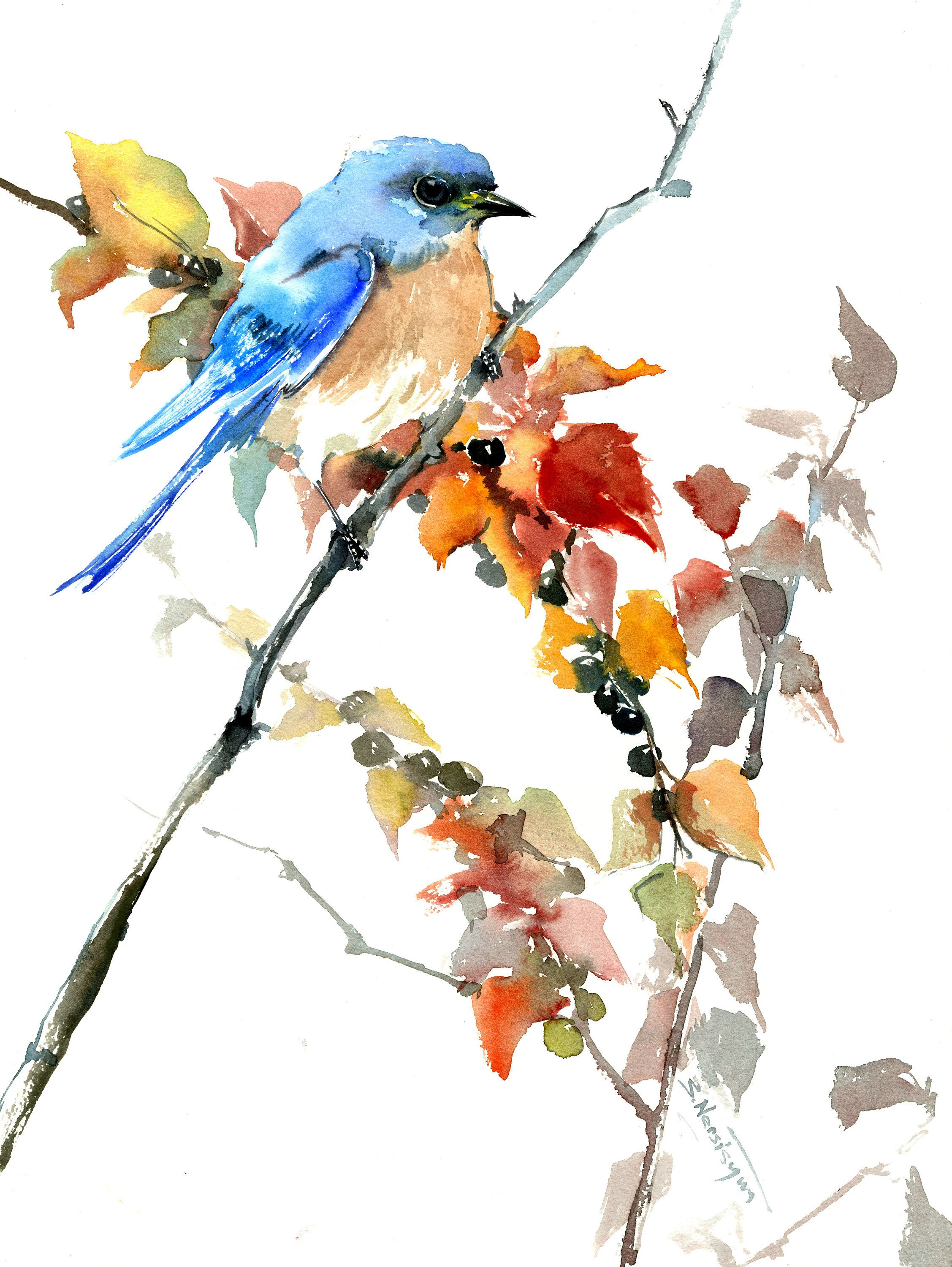 17 Best images about Fall Leaves on Pinterest | Clip art ... |Fall Bird Paintings
