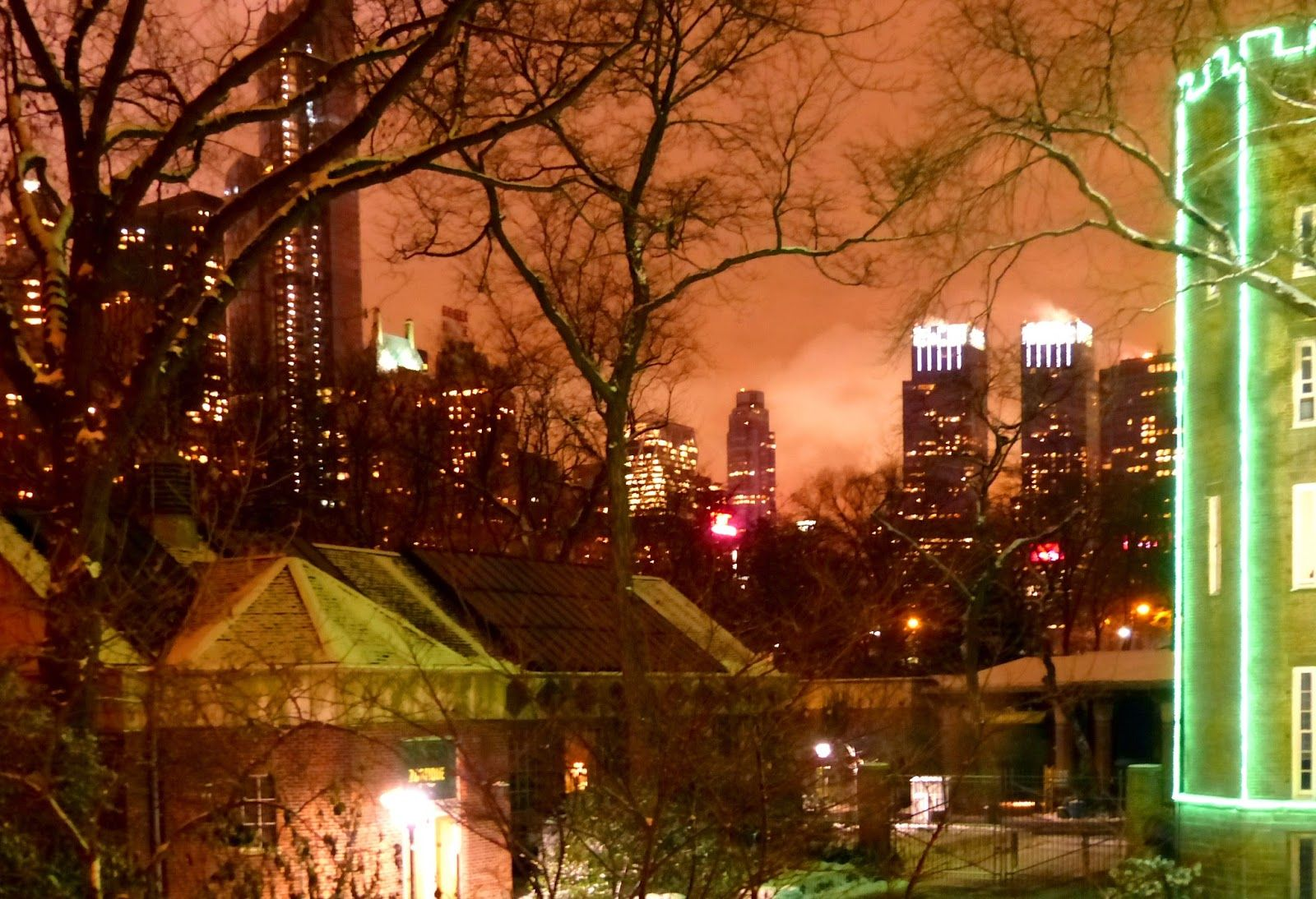 Edge of snowy Central Park Zoo at night.