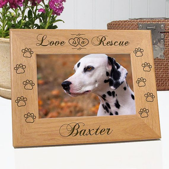 Dog Rescue Custom Name Photo Frame Pet Rescue Picture Frame Dog