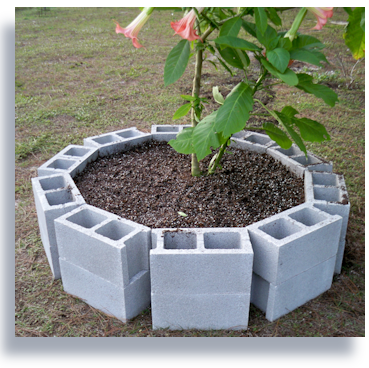 This is the circular raised cinder block bed with soil and for Circular raised garden bed ideas