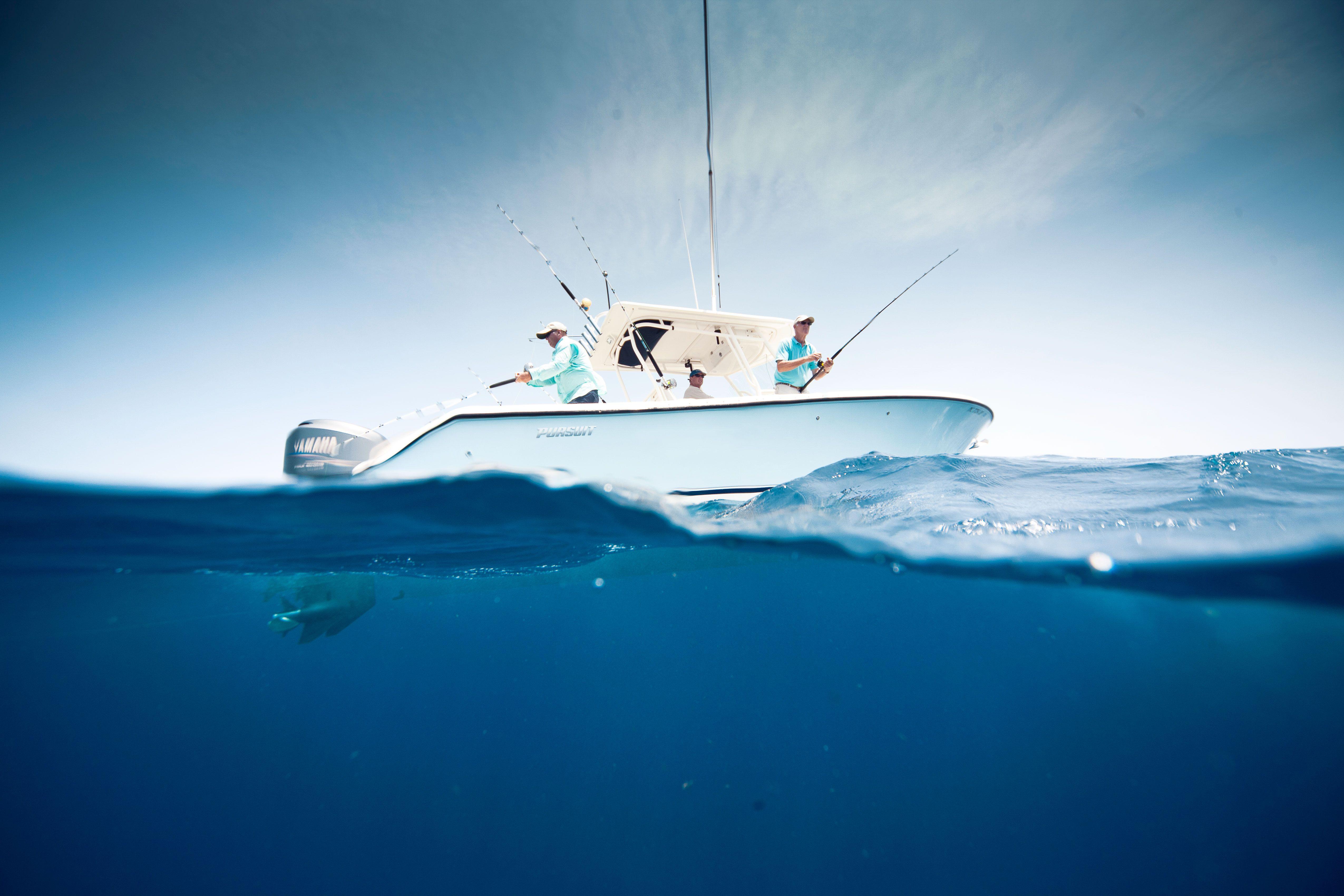 16 Top Fishing Tenders Fish Wallpaper Offshore Fishing Fish
