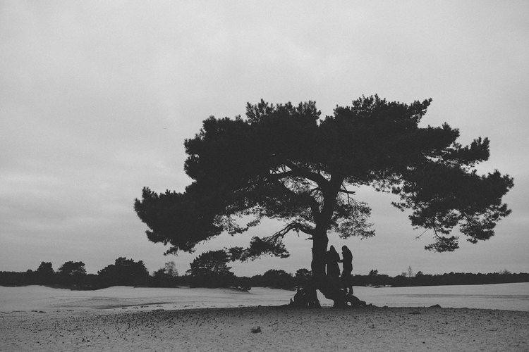Loveshoot in Soesterduinen Near Utrecht by Mark Hadden Bruidfotograaf, #bloemendaal, #soesterduinen, #utrecht, #amsterdam, #engagement shoot, #loveshoot, #bruidsfotografie, #bruiloftfotografie, #weddingphotography, #wedding photography #bruidsfotograaf