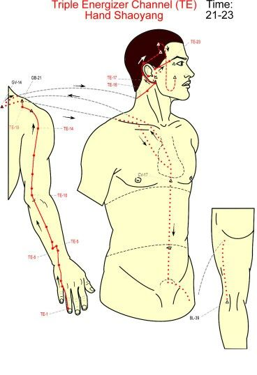 AcupunctureCom Acupuncture Points Urinary Bladder UB 23