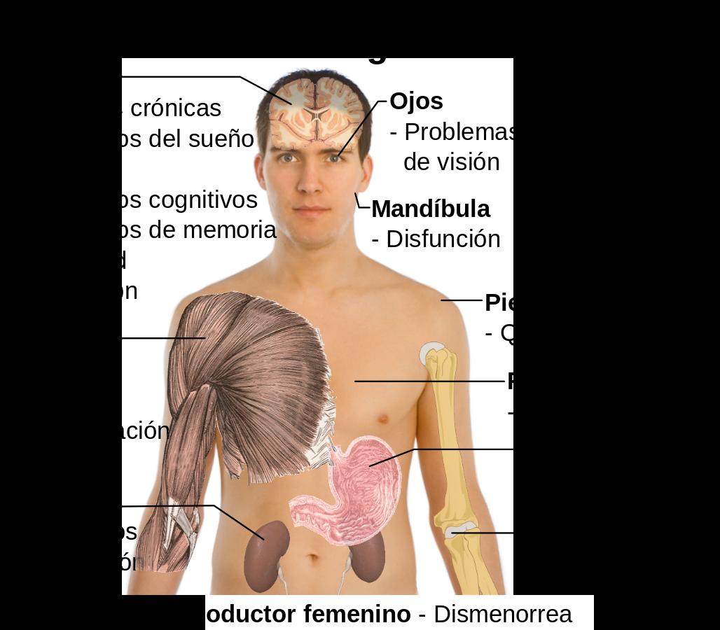 Síntomas de resfriado y dolor en la mandíbula