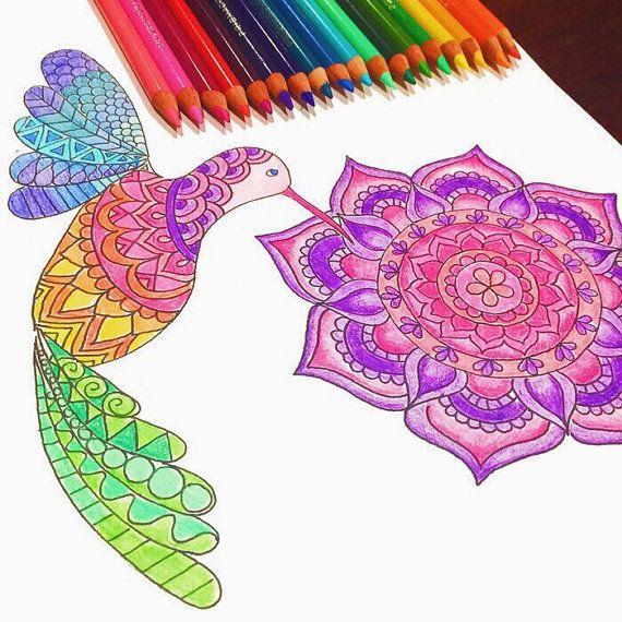 Tarareo Descargar página para colorear de aves, página para colorear ...